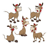 Set  Cartoon Illustration.Cute Donkeys. Cartoon Character Stock Images