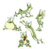 Set Cartoon Illustration Cute Green Frogs for you Design Stock Images