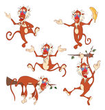 Set Cartoon Illustration. A Cute Monkeys Stock Images