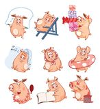 Set of Cartoon Illustration. Cute Pigs in Different Poses for you Design. Cartoon Character royalty free illustration