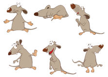 Set of Cartoon Illustration.  Cute Rats for you Design Stock Image