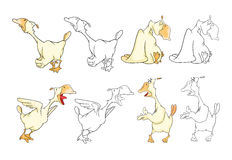 Set Cartoon Illustration. A Domestic Geese. Cartoon Character. Coloring Book Royalty Free Stock Photography