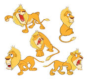 Set of Cartoon Illustration. A Funny Yellow Lions for you Design Stock Images