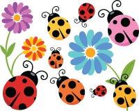 Cartoon Ladybug Clipart royalty free stock images