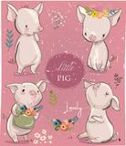 Set with cartoon little pigs. Vector collection Stock Photos