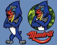 Set of cartoon mandrill monkey character. Vector of set of cartoon mandrill monkey character Royalty Free Stock Photos