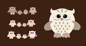 Set of cartoon owls. Cute owl family. Set of  colourfull owls Royalty Free Stock Images