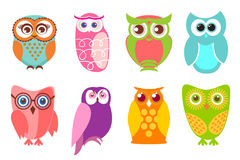 Set of cartoon owls. Vector illustration of cartoon owls in pastel and bright colord Stock Image
