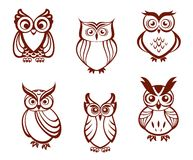 Set of cartoon owls. For wisdom or education concept design. All birds are isolated on white background Stock Image