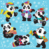 Set with cartoon panda in winter Stock Photos