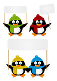 Set of cartoon penguins with paper cards Royalty Free Stock Images