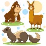 Animals part 22