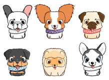 Set of cartoon puppies. Vector illustration isolated on white Stock Image