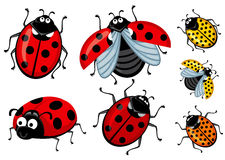 Set of cartoon red and ladybirds on a white background, Corel Royalty Free Stock Photography