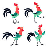 Set of cartoon rooster in various poses  on white backgr Royalty Free Stock Photography