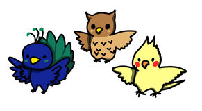 Set of cartoon styled cute birds. Peacock. Owl. Cockatiel stock images
