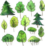 Set of cartoon trees drawing by watercolor Royalty Free Stock Photos