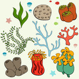 Set of cartoon underwater plants and creatures. Isolated vector illustration Royalty Free Stock Images
