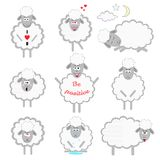 Set of cartoon vector sheeps. In different positions and emotions Royalty Free Stock Photography