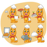 Set Cat Character Chef Holding Various Objects Stock Photography
