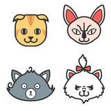 Set of cat icons. Cute persian, naked and scottish cat Royalty Free Stock Images