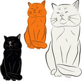 Set of cat illustrations. Illustrations of three similar looking cats one black, one ginger and a white one isolated on white background Royalty Free Illustration