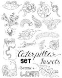 Set with caterpillars, larva and worms. Hand drawn set with pests, larva, caterpillars, moth, worms and other invader insects isolated. Doodle line art Royalty Free Stock Photos