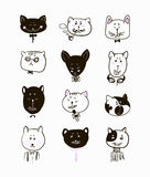 Set of cats heads. Face  Vector illustration Stock Photos