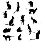Set of cats silhouettes Royalty Free Stock Photography