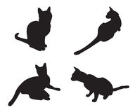 Set of cats Silhouettes isolated Royalty Free Stock Photo
