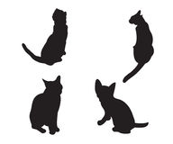 Set of cats Silhouettes isolated Stock Image