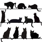 Set of cats silhouettes. Over white background Stock Photography