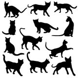 Set of cats silhouettes. On a white background. Vector illustration royalty free illustration