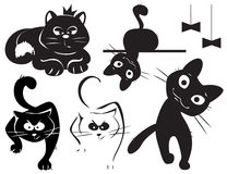 Set of cats Royalty Free Stock Photography