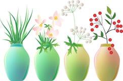 A set of ceramic jars with plants. A set of ceramic jars with branch of ash, flowers and plants vector illustration