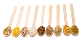 Set of cereals isolated Stock Photo