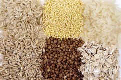 Set of cereals: rice, millet, buckwheat, oatmeal Stock Image