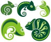 Chameleon icons. Cartoon illustration Stock Photography
