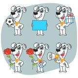 Set Character Dog Holding Ball Paper Flower Gift Megaphone Royalty Free Stock Photos
