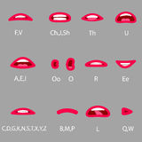 Set of Character Lip-Sync. Lip-Sync - Mouth reference. Set the provisions of the mouth when pronouncing the different sounds Royalty Free Stock Photo