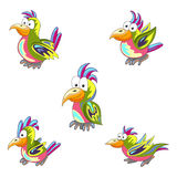 Set of cheerful multi-colored parrots. Tropical bird. Collection Stock Photo