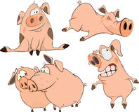 A set of cheerful pigs cartoon Royalty Free Stock Image