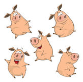 Set of cheerful pigs Cartoon Royalty Free Stock Images