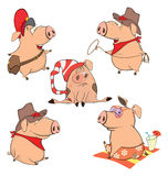 Set of cheerful pigs Cartoon Stock Photos