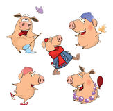 Set of cheerful pigs Cartoon Royalty Free Stock Photo
