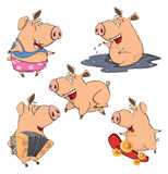 Set of cheerful pigs cartoon. Set of various small pigs Royalty Free Stock Images