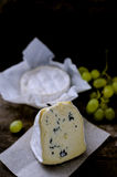 Set of cheese with a white and blue mold Royalty Free Stock Image