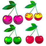 Set cherries Royalty Free Stock Photos