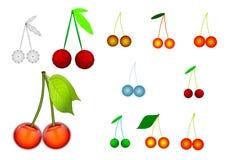 Set of cherries. Iillustration. Stock Photos