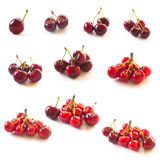 Set of cherries isolated on white Royalty Free Stock Photo